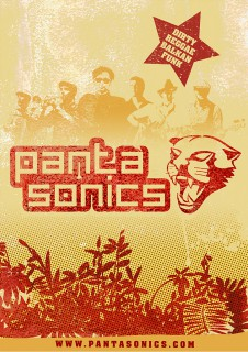 pantasonics tourposter