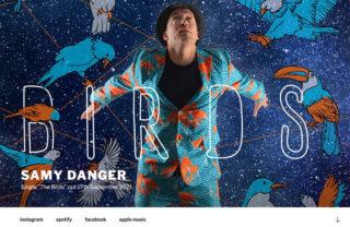 webvisitenkarte samy danger